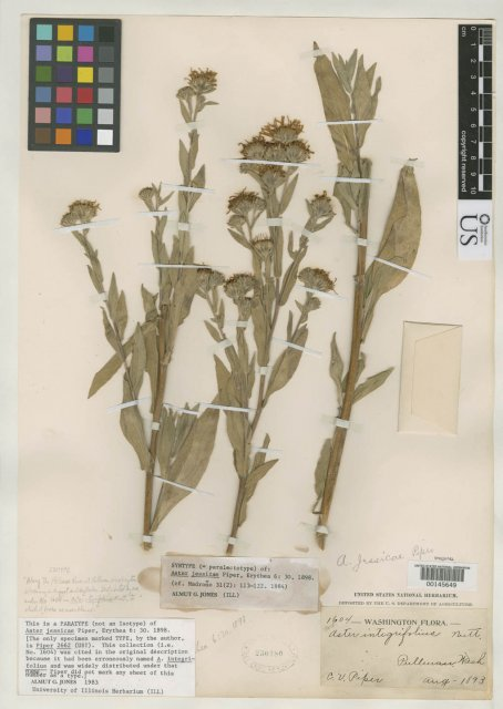 http://collections.mnh.si.edu/search/botany/?irn=2095555
