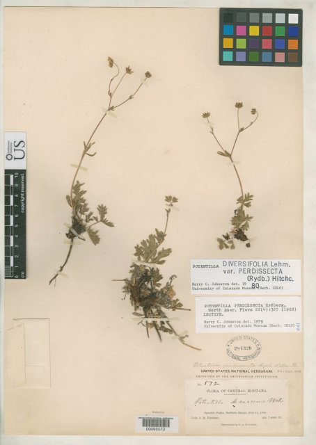 http://collections.mnh.si.edu/search/botany/?irn=2111890