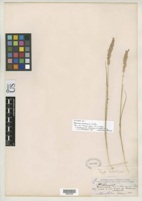 http://collections.mnh.si.edu/services/media.php?env=botany&irn=10137421