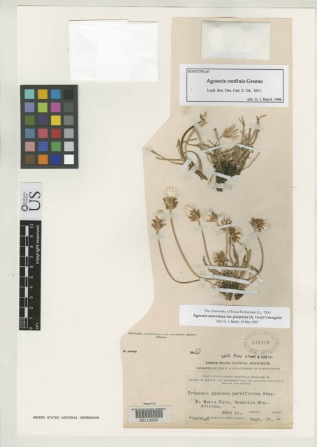 http://collections.mnh.si.edu/search/botany/?irn=2126394