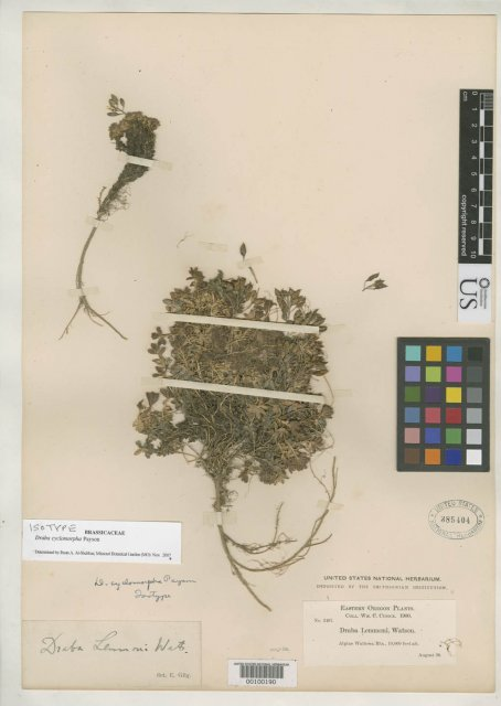 http://collections.mnh.si.edu/search/botany/?irn=2082462