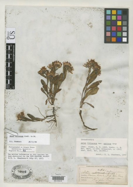 http://collections.mnh.si.edu/search/botany/?irn=2154120