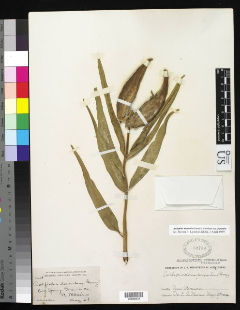 http://collections.mnh.si.edu/search/botany/?irn=10173800