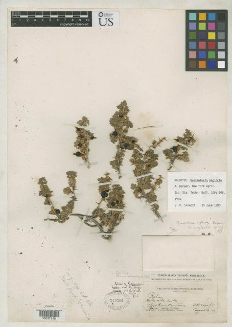 http://collections.mnh.si.edu/search/botany/?irn=2108669