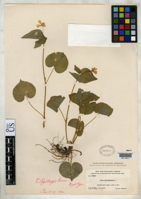 http://collections.mnh.si.edu/search/botany/?irn=2141267