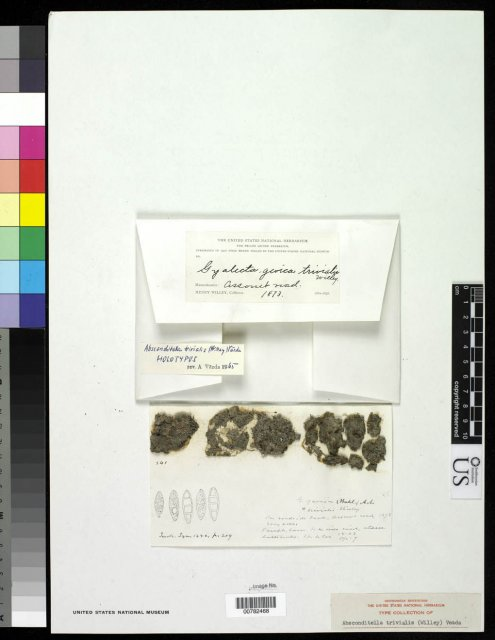 http://collections.mnh.si.edu/search/botany/?irn=2862945
