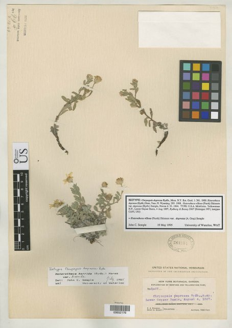 http://collections.mnh.si.edu/search/botany/?irn=2162154