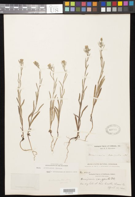 http://collections.mnh.si.edu/search/botany/?irn=10814855
