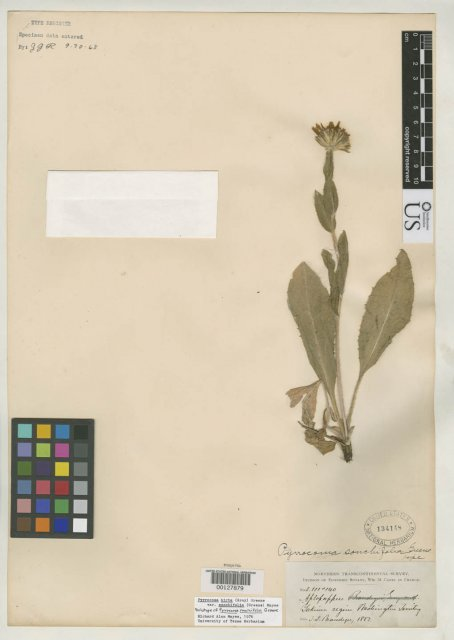 http://collections.mnh.si.edu/search/botany/?irn=2126109